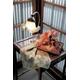 【箱入り】■日本製高級風呂敷■はいからもだん綿大ふろしき■よろけ絞り散花(ブルー)■ 写真2