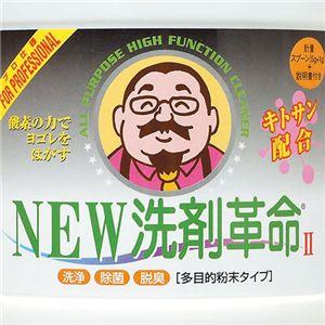 2個セット!NEW洗剤革命II