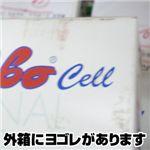 【箱汚れの為、特価!】ターボセル コルサロ(7分丈)M