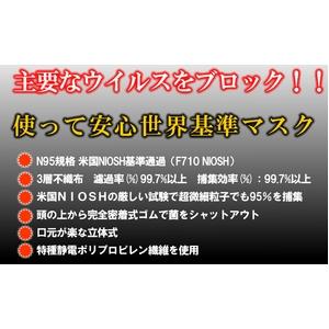 新型インフルエンザ対策!米国N95規格マスク 5枚入