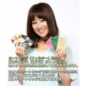 電子たばこ TaEco(タエコ)専用交換カートリッジ(メンソール)15本入りの商品画像大2