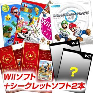 任天堂 Wii Newスーパーマリオブラザーズ + シークレットソフト2本 セット