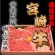 宮崎牛最高ランク(A-5)黒毛和牛 サーロイン 1キロ