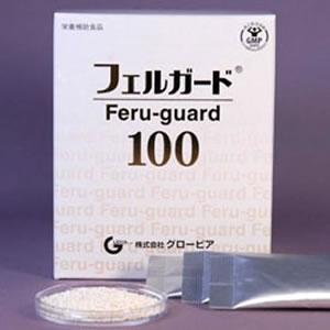 フェルガード100