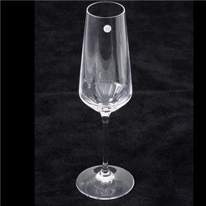 Wedgwood(ウェッジウッド) クリスタルグラス デイライト シャンパン