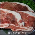 鹿児島黒豚 焼肉用(単品) うで500g