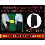 田口式健康スリムパンツ 【シークレットダンディ Lサイズ】