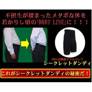 田口式健康スリムパンツ 【シークレットダンディ LLサイズ】