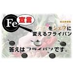 軽量鉄鋳物フライパン FE宣言 24cm 3個セット