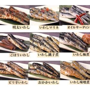 いわし9品組み合わせ(各100g 計900g)