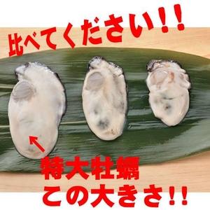 広島県産!2Lサイズ特大牡蠣☆たっぷり1kg!!