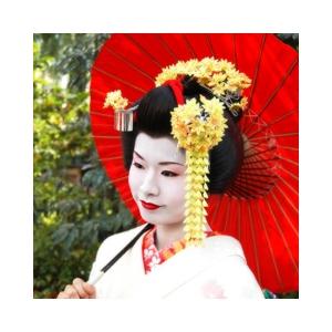 京都ラプソーヌ スイーツクリーム -しっとりタイプ-