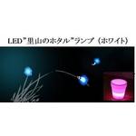 """LED""""里山のホタル""""ランプ (ホワイト)"""