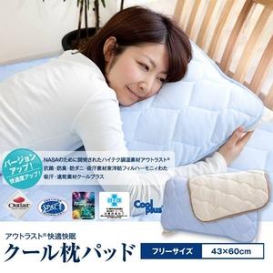 2010年版☆アウトラスト(R) 快適・快眠 クール枕パッド