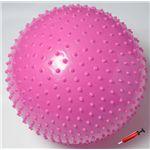 ソフタッチ エクササイズボール「いがぐりくん」 SO-IGK55 ピンク 55