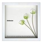 《フラワーフレーム》F-style Frame Anthurium /white(アンスリウム/ホワイト)