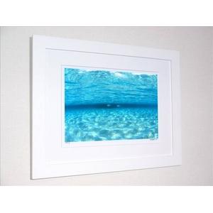 《アートフォトフレーム》透明な海を泳ぐ魚(撮影地:モルディブ)