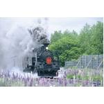 《DVD》鐵路の響演〔SL・蒸気機関車の風景〕〔3枚組〕