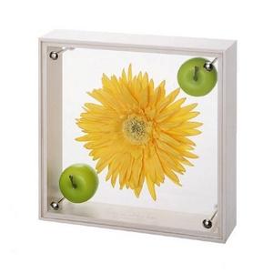 《フラワーフレーム》フラワーアート コレクションボックス Mサイズ・イエローガーベラ&アップル
