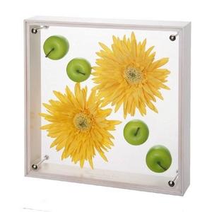 《フラワーフレーム》フラワーアート コレクションボックス Lサイズ・イエローガーベラ&アップル