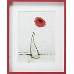 《絵画》スコット オルソン シングル レッド ガーベラ