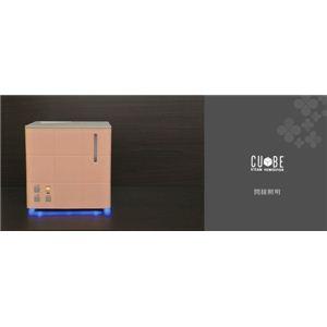 Apix(アピックス) スチーム式アロマ加湿器 CUBE AHD-031-IV アイボリー(IV)