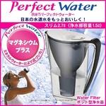 ポット型浄水器 BWT パーフェクトウォーター スリム 2.7L