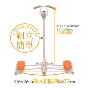 ATEX(アテックス) スタイル アップ レッグ AX-H144 【フィットネスマシーン】