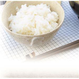 電子レンジ専用炊飯器 備長炭入り ちびくろちゃん 米研ぎプラス