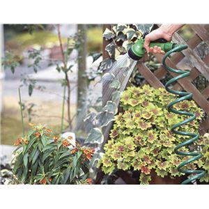 F5966 菜菜畑 ガーデンコイルホース レギュラー グリーン