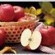 【訳あり!りんご】甘くてジューシー山形県産サンふじ5kg(18〜20玉)