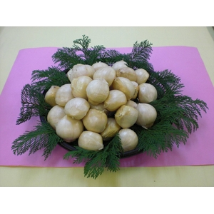 完全無農薬・青森県産4片にんにく 白神ジャンボ