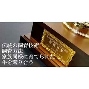 松阪牛A5ヒレ3.5kg 15人〜20人前