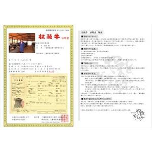 【お歳暮用 のし付き(名入れ不可)】特選A5松阪牛モモステーキ100g 2枚セット