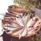 沼津「奧和」のひもの詰合せ6種(11枚)あじ、さんま、かます、金目鯛、えぼ鯛、さば