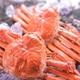 【身入り抜群のA級品!】カナダ産ボイルズワイガニ姿・約500g×2尾 冷凍ズワイ蟹の詳細ページへ
