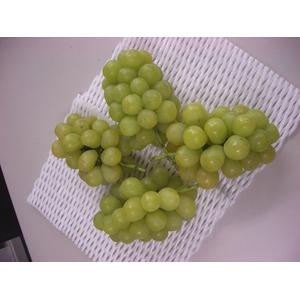 【10月10日で終了】長野県産ぶどう(ロザリオ ビアンコ) 2kg(4〜5房)