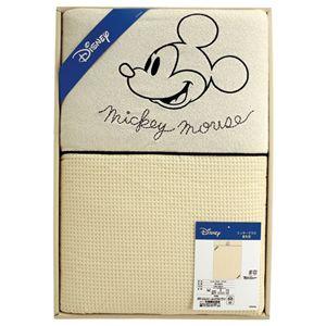 ディズニー ミッキーマウス ブライト(肌布団1枚)
