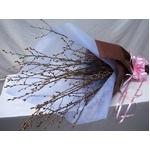 春らんまん♪啓翁桜の花束の詳細ページへ
