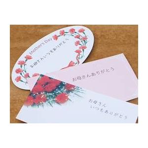【母の日限定ギフト】カーネーション鉢 生産者厳選!ラッピング・リボン・かご入り・カード付き