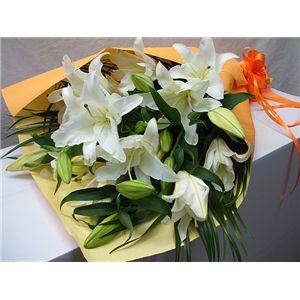 【母の日限定ギフト】カサブランカの花束 花(ツボミ)総数15輪以上