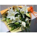 【母の日限定ギフト】カサブランカの花束 花(ツボミ)総数15輪以上の詳細ページへ