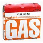 Iwatani(イワタニ) カセットガス CB-250-ORの詳細ページへ