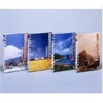 魅惑の鉄道風景 七曜週めくり 【全4巻セット】 DVD(4枚組)の詳細ページへ