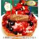 【12月16日で予約終了 2010年クリスマス向け】フルーツタルトドーム