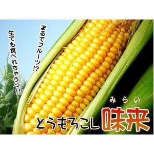【ご予約】生でも食べられる!千葉県産とうもろこし味来5kg(11本〜17本)