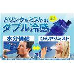 ミスト機能&ドリンクボトル機能 DRINK MIST(ドリンクミスト) 【2個セット】