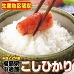 【味と価格に自信アリ!平成22年産】 福島県産こしひかり白米10Kg(5kg×2)