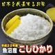 【平成22年産新米 味と価格に自信アリ!】魚沼産こしひかり 白米20Kg(5kg×4)