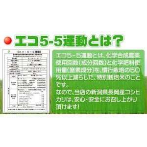 新潟県長岡産コシヒカリ5kg